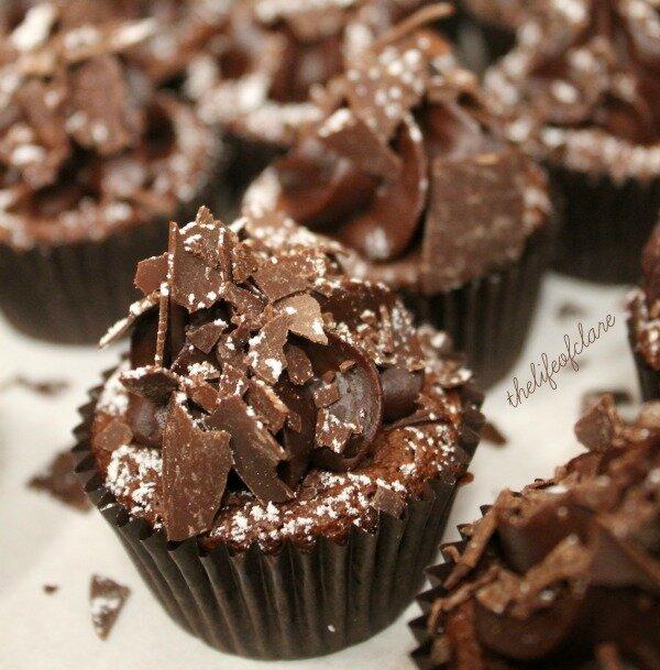 chocolate cup cakes EDB13