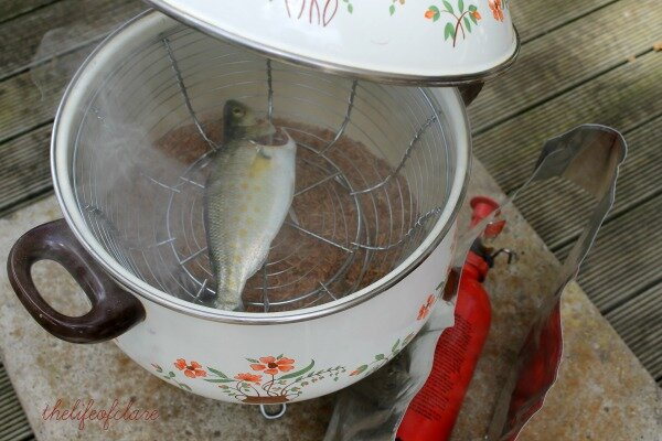 raw fish in smoker