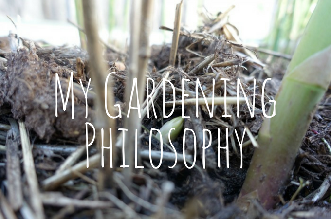 gardening-philosophy-feature-image