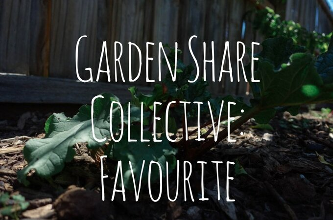 Garden Share Collective: Favourite