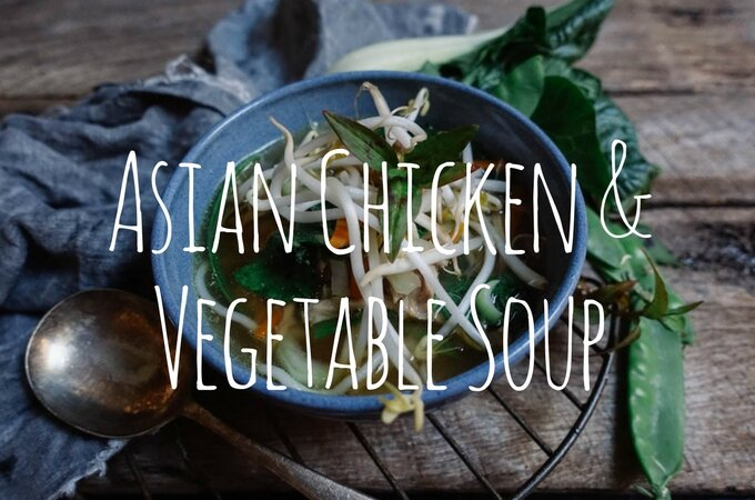 Asian Chicken and Vegetable Soup