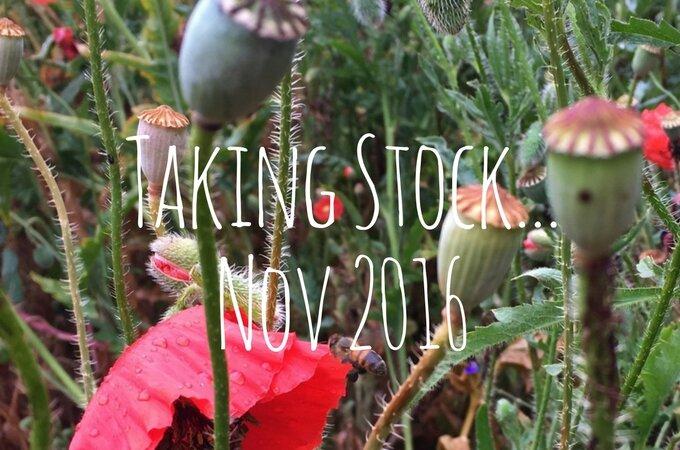 Taking Stock… November 2016